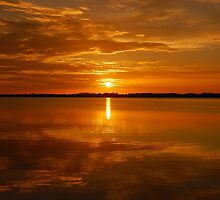 Lake Dora Sunset, Mt. Dora Florida by Shane Jones