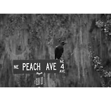 Peach Ave Photographic Print