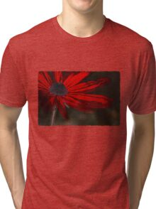 Red, for you... Tri-blend T-Shirt