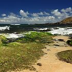 Ho'okipa Beach Maui by James Eddy