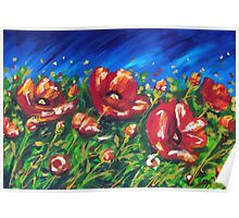 Wild Poppies by Ira Mitchell-Kirk Poster