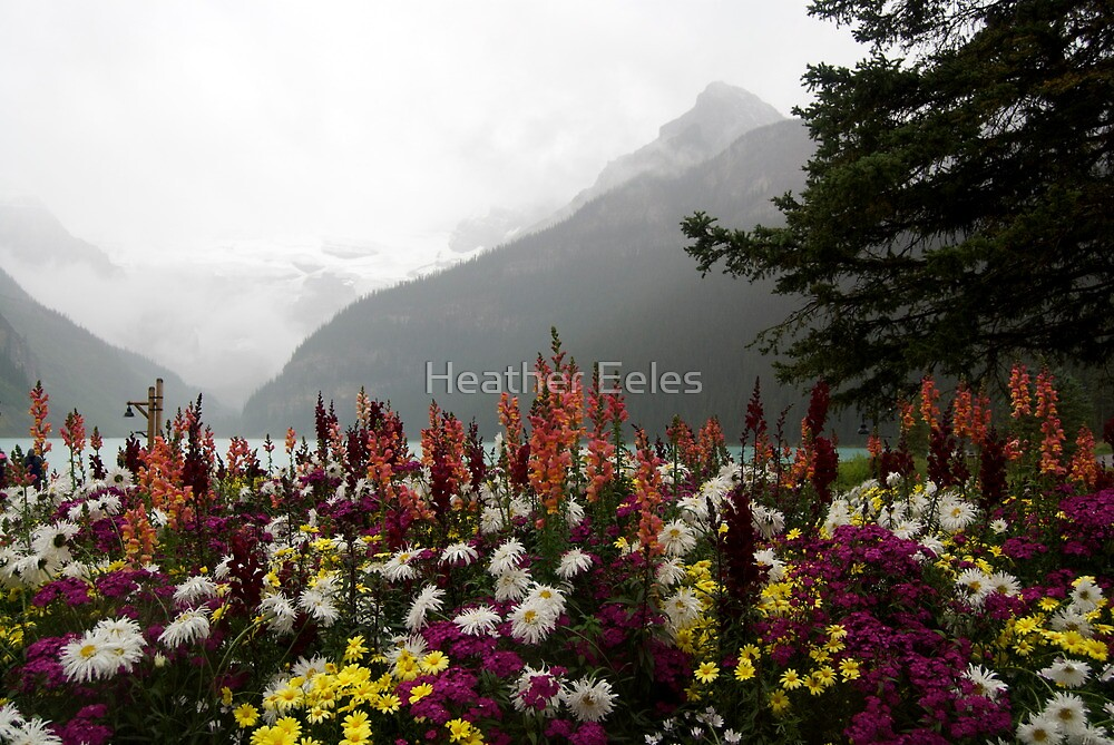 Lake Louise Chateau Clouds by Heather Eeles