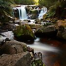 halls falls, the blue tier. northeast tasmania by tim buckley | bodhiimages photography