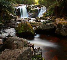 halls falls, the blue tier. northeast tasmania by tim buckley   bodhiimages