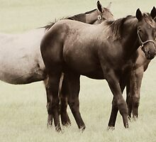 Pasture Pals by AuntDot