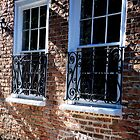 Historic Charleston SC II by PJS15204