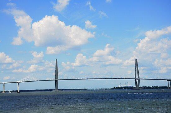 Historic Charleston SC III by PJS15204
