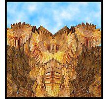 Monument Valley (Sunflower Version) Photographic Print