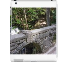 Whatcom Falls iPad Case/Skin