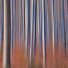 Into the Woods No9 - Digital Art by David Alexander Elder