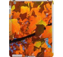 Orange Fall Maple Leaves iPad Case/Skin