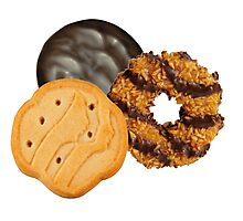 Girl Scout Cookies All Star Team Photographic Print