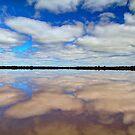 """""""Pink Lake Reflections"""" by jonxiv"""