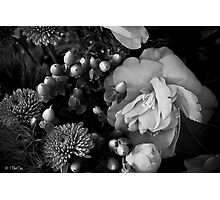 Still Life with Camellia Photographic Print