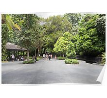 Tourists inside the Singapore Botanic Garden Poster
