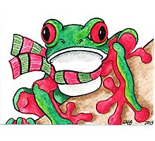 2013 Holiday ATC 21 - Red and Green Frog Photographic Print