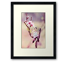 Darling Buds of May Framed Print
