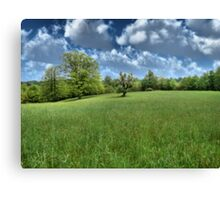 Appalachian Green Canvas Print