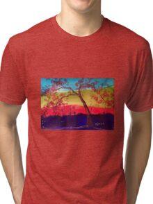 Pink blossoms Tree Tri-blend T-Shirt