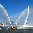 WORLD PORT DAYS 2012 ~ Rotterdam II by Hans Bax
