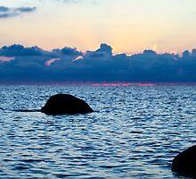 Pale as the Sea by tutulele