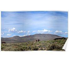 Nevada Living Poster