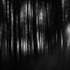 Running Away From My Nightmares by Denise Abé