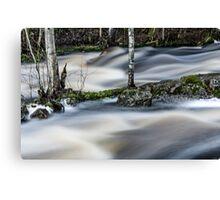 River four Canvas Print