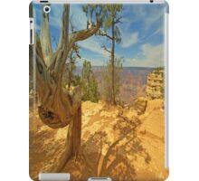 Nature`s Art iPad Case/Skin