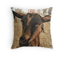 Hey Sugar, How 'Bout a Little Barry White? Throw Pillow