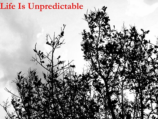 Untitled by Ciarra Ornelas
