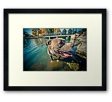 Happy Birthday by Tucker Adams Framed Print
