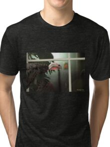 Peeping Tom Tri-blend T-Shirt