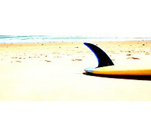 Blue Single Fin Photographic Print