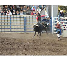 Bull Riding Monterey County Fair Rodeo 1 Photographic Print