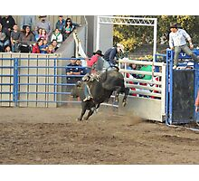 Bull Riding Monterey County Fair Rodeo 2 Photographic Print