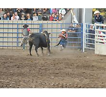 Bull Riding Monterey County Fair Rodeo 4 Photographic Print