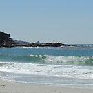 Carmel Beach & Point Lobos by Sandra Gray