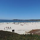 Carmel Great Sand Castle Contest by Sandra Gray