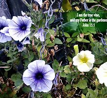 Clematis in basket. MESSAGE OF THE CREATOR. TEXT/BESPOKE by Shoshonan