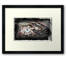 Ocean and Earth Framed Print
