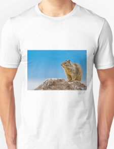 California Ground Squirrel, (Spermophilus beecheyi) T-Shirt