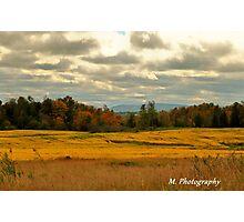 Yellow Fields Photographic Print