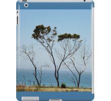 Stripped Down Cypress Along the Ocean iPad Case/Skin