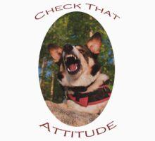 Check That Attitude Kids Clothes