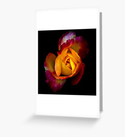 But I'll give you this instead... Greeting Card
