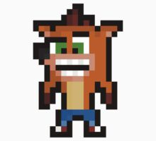 Pixel Crash Bandicoot Sticker by PixelBlock