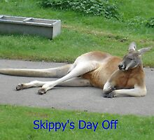 Skippy's Day Off by KazzaF