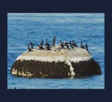 Cormorants on the Big Rock One Piece - Short Sleeve