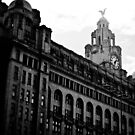 Liver Building by AndrewBerry